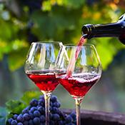 Français, cuisine et vins
